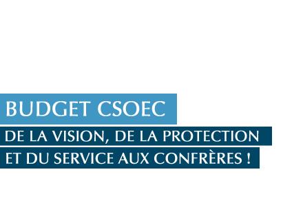 budget-2014-du-csoec