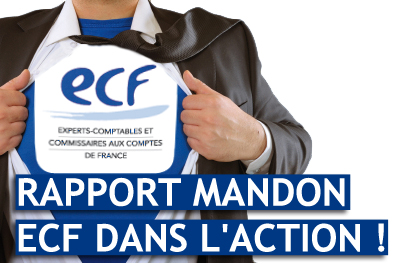 rapport-mandon-ecf-dans-laction